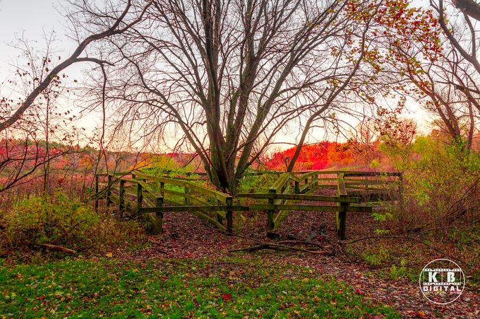 Fall in Rockford, Illinois by KB Digital